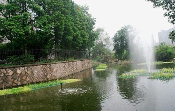 城镇生活污水生态处理