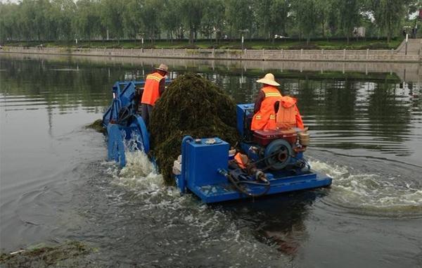 湖泊和水库生态修复